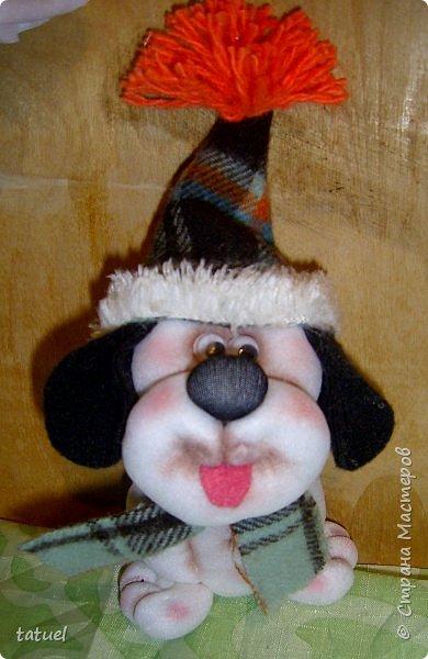 Всем доброго времени! В продолжении собачьей темы : собачонок в зимнем наряде на лопатке. фото 3
