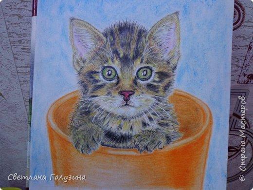 Здравствуйте уважаемые Мастера и Мастерицы, пробую себя в рисовании, котенка нарисовала цветными карандашами, хочу предупредить - я не художник, черпала информацию о всем, что связано с рисованием в интернете, и вот что получилось  у меня, хорошо бы было получить совет художника - приму любую критику