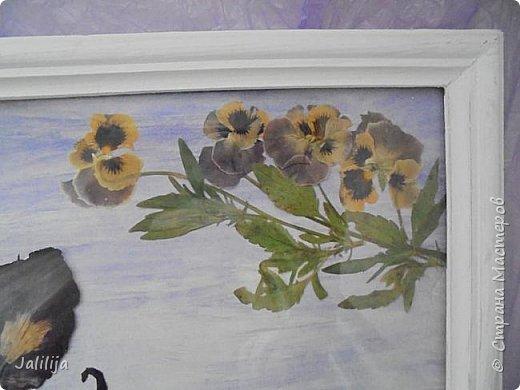 Уважаемые мои гости, сегодня хочу показать вам свою  первую работу в совершенно новой для меня технике.  Я люблю лето, люблю его разноцветье. Мне всегда хочется сохранить его подольше.  Вот пробую. Насушила разных цветов-лепестков, листиков, правда, взялась за это поздно, уже осенью.  фото 15