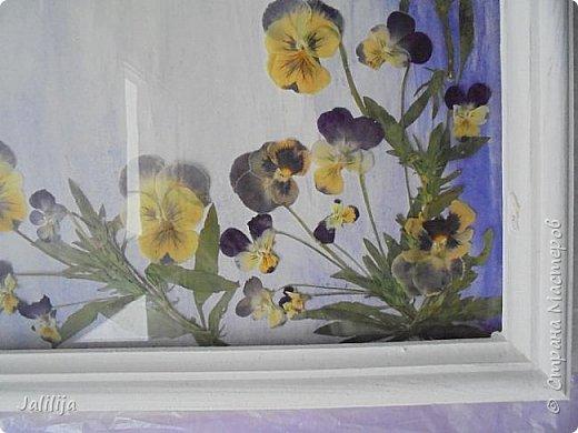 Уважаемые мои гости, сегодня хочу показать вам свою  первую работу в совершенно новой для меня технике.  Я люблю лето, люблю его разноцветье. Мне всегда хочется сохранить его подольше.  Вот пробую. Насушила разных цветов-лепестков, листиков, правда, взялась за это поздно, уже осенью.  фото 16