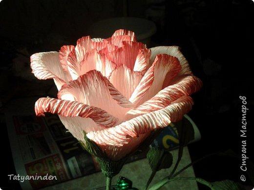 Розы с конфетами фото 3