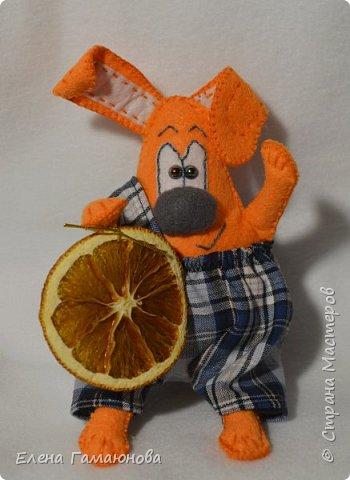 Пес Апельсин. С сушеной  долькой апельсина. Дополнительно ароматизирован маслом апельсина. фото 1