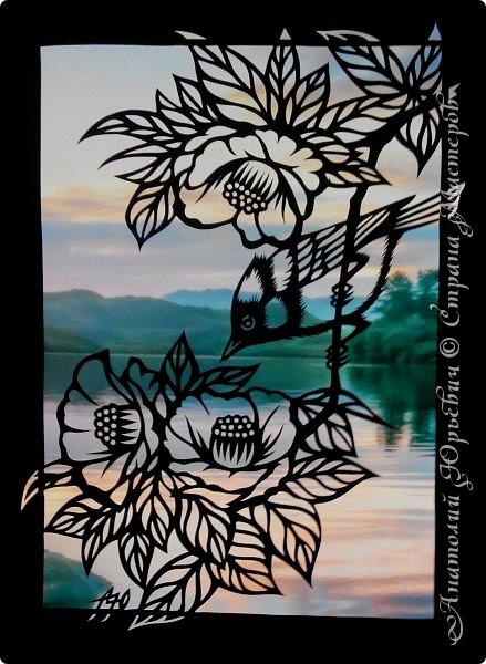 """Всем добрый день! Пришла весна и """"прилетела первая птичка"""".( Yuhina occipitalis - Рыжебрюхая Юхина.-род воробьиных птиц из семейства тимелиевые. Естественная среда обитания — равнинные и горные влажные леса умеренной, тропической и субтропической зон Юго-Восточной Азии).   -Эскиз для """"вырезалки"""" выполнен, изменён и доработан по цветной работе китайского художника Zeng Xiao Lian.  Размер - 12х16см. фото 11"""