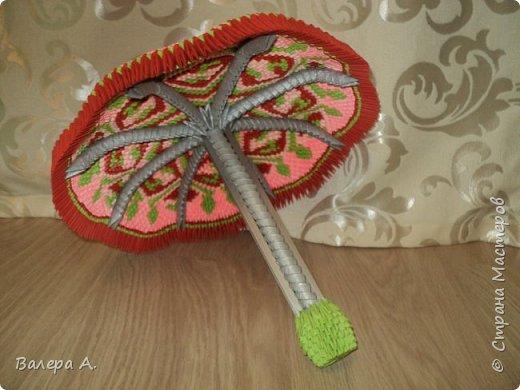 Зонтик. фото 1