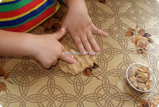 Домик для белочки.  фото 3