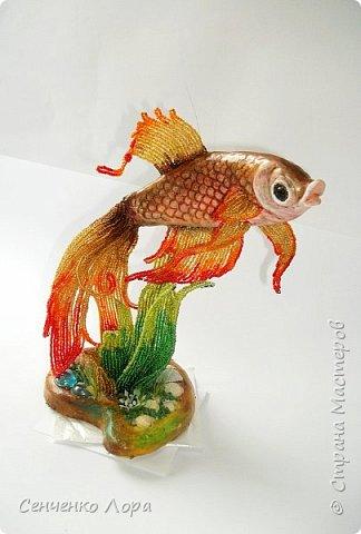 Моя Золотая рыбка - авторская работа. фото 5