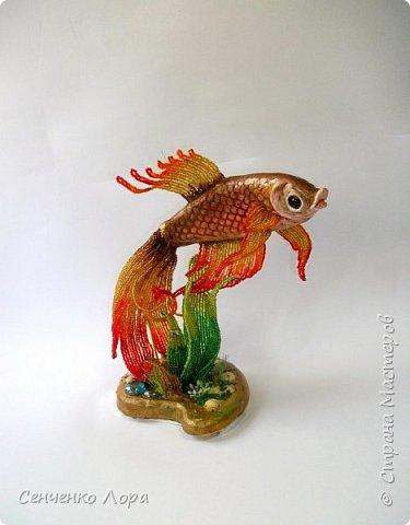 Моя Золотая рыбка - авторская работа. фото 4