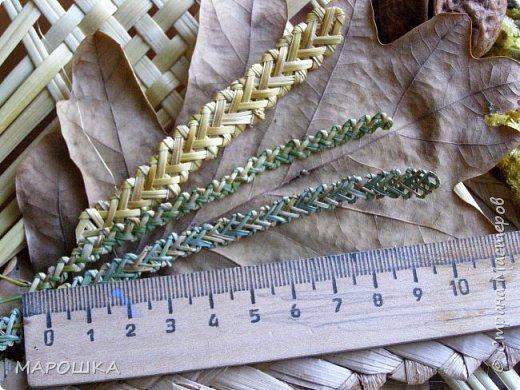 закончилась у меня трава для изготовления веревок, да вот остались тонюсенькие травинки - выбросить? они такие зеленые, такие длинные, баловства ради попробовала заплести зубатку.. смотрите: фото 7