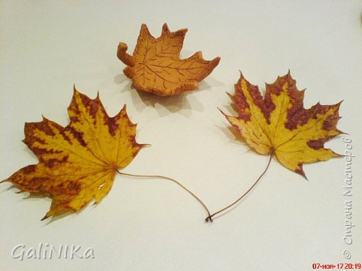 Хороший был сегодня день!  Раскрасила я утром лист кленовый, запечатлённый в глине.  фото 5
