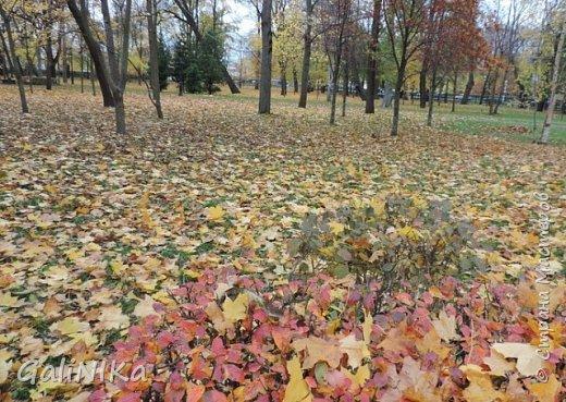 Хороший был сегодня день!  Раскрасила я утром лист кленовый, запечатлённый в глине.  фото 9