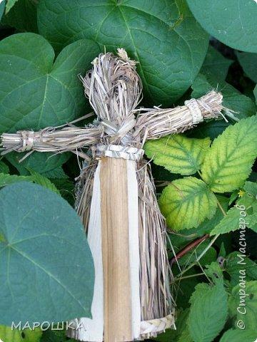 закончилась у меня трава для изготовления веревок, да вот остались тонюсенькие травинки - выбросить? они такие зеленые, такие длинные, баловства ради попробовала заплести зубатку.. смотрите: фото 22