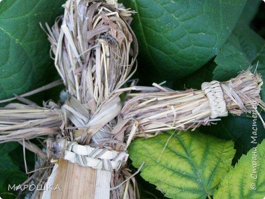 закончилась у меня трава для изготовления веревок, да вот остались тонюсенькие травинки - выбросить? они такие зеленые, такие длинные, баловства ради попробовала заплести зубатку.. смотрите: фото 23