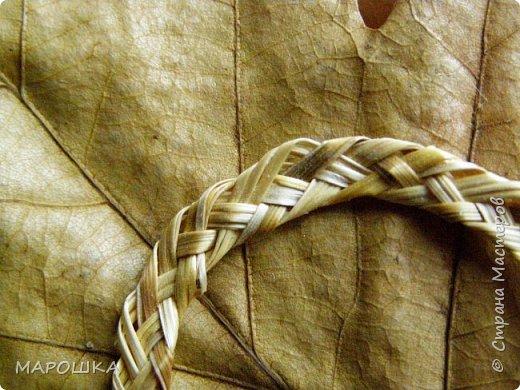 закончилась у меня трава для изготовления веревок, да вот остались тонюсенькие травинки - выбросить? они такие зеленые, такие длинные, баловства ради попробовала заплести зубатку.. смотрите: фото 16