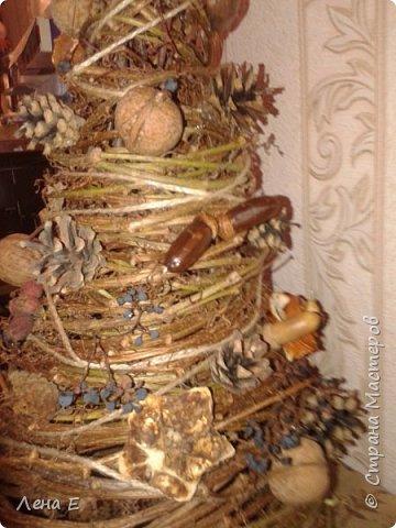 Всем Здравствуйте! Вот такая елочка родилась, использован природный материал. Шишки, орехи, каштаны, боярышник, розочки из апельсинов, желуди. фото 4