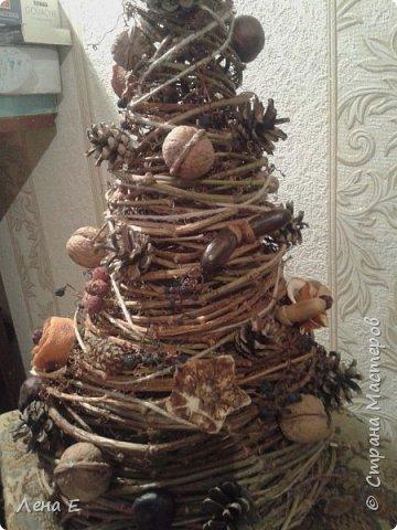 Всем Здравствуйте! Вот такая елочка родилась, использован природный материал. Шишки, орехи, каштаны, боярышник, розочки из апельсинов, желуди. фото 3