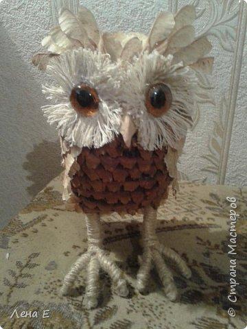Вот такая сова или филин) Также использован природный материал, глазки марблс. фото 1