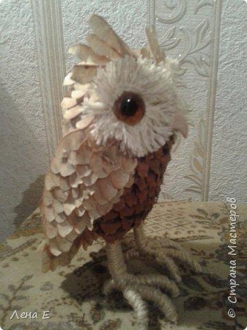 Вот такая сова или филин) Также использован природный материал, глазки марблс. фото 2