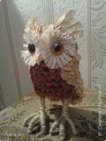 Вот такая сова или филин) Также использован природный материал, глазки марблс. фото 4