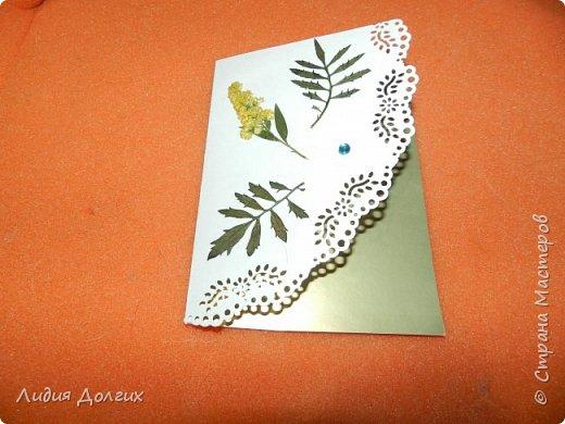 Доброго времени суток. Представляем Вам 3 открытки, сделанные ко дню учителя. Использовали белую и цветную бумагу и различные засушенные листочки и цветочки. Заодно опробовали купленный пробойник. Это открытка № 1 фото 1