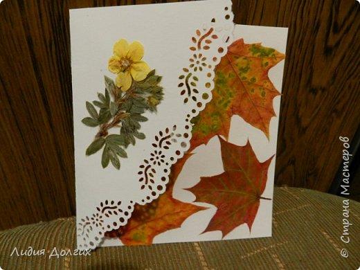 Доброго времени суток. Представляем Вам 3 открытки, сделанные ко дню учителя. Использовали белую и цветную бумагу и различные засушенные листочки и цветочки. Заодно опробовали купленный пробойник. Это открытка № 1 фото 4