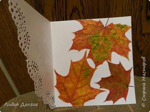Доброго времени суток. Представляем Вам 3 открытки, сделанные ко дню учителя. Использовали белую и цветную бумагу и различные засушенные листочки и цветочки. Заодно опробовали купленный пробойник. Это открытка № 1 фото 5