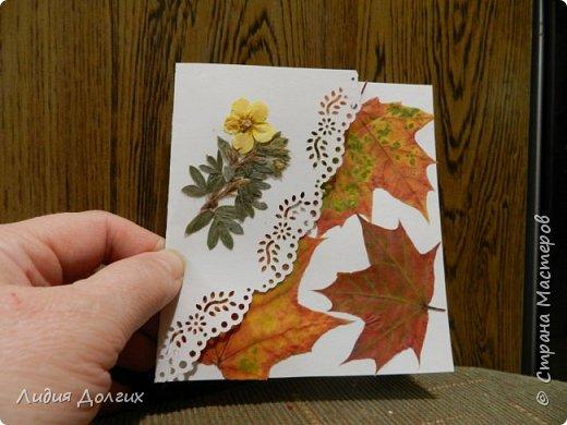 Доброго времени суток. Представляем Вам 3 открытки, сделанные ко дню учителя. Использовали белую и цветную бумагу и различные засушенные листочки и цветочки. Заодно опробовали купленный пробойник. Это открытка № 1 фото 6