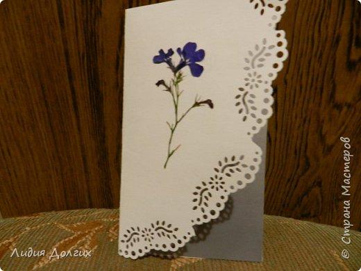 Доброго времени суток. Представляем Вам 3 открытки, сделанные ко дню учителя. Использовали белую и цветную бумагу и различные засушенные листочки и цветочки. Заодно опробовали купленный пробойник. Это открытка № 1 фото 7