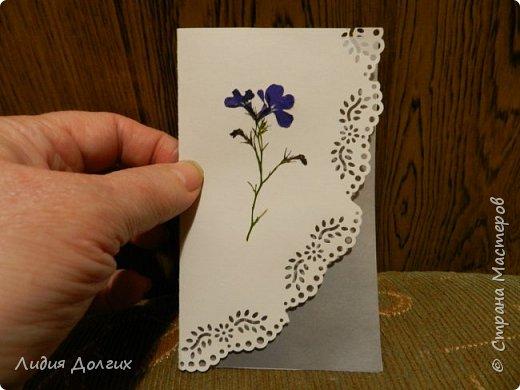 Доброго времени суток. Представляем Вам 3 открытки, сделанные ко дню учителя. Использовали белую и цветную бумагу и различные засушенные листочки и цветочки. Заодно опробовали купленный пробойник. Это открытка № 1 фото 10