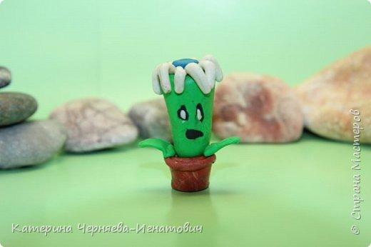 """Сегодня, Ермак закончил свою коллекцию пластилиновых растений из игры """"Растения против зомби"""". Первым в этом списке Кактус. фото 4"""