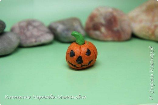 """Сегодня, Ермак закончил свою коллекцию пластилиновых растений из игры """"Растения против зомби"""". Первым в этом списке Кактус. фото 6"""