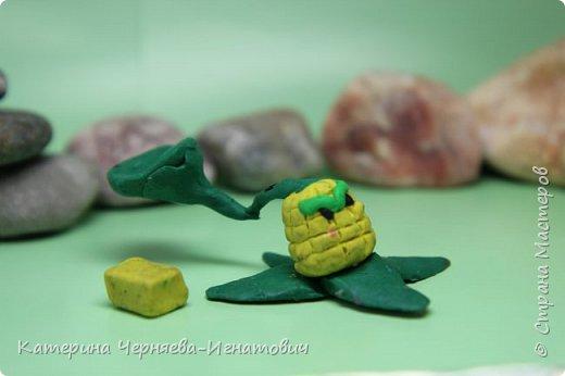 """Сегодня, Ермак закончил свою коллекцию пластилиновых растений из игры """"Растения против зомби"""". Первым в этом списке Кактус. фото 7"""