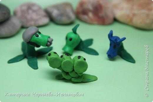 """Сегодня, Ермак закончил свою коллекцию пластилиновых растений из игры """"Растения против зомби"""". Первым в этом списке Кактус. фото 8"""
