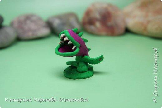 """Сегодня, Ермак закончил свою коллекцию пластилиновых растений из игры """"Растения против зомби"""". Первым в этом списке Кактус. фото 15"""