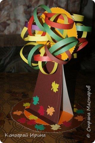 Осеннее дерево. фото 14
