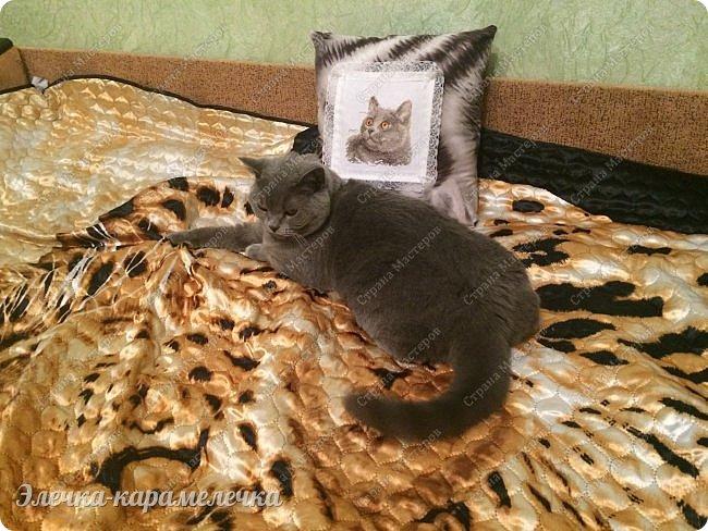 Набор от Алисы 0-134 «Британский кот», аида14, мулине гамма 13 цветов, 2 бленда, Бэк в 6 цветов. Ниток хватило и ещё осталось.  Очень похожа на нашу любимицу Дымку))), у неё тоже лиловая шубка , но у нашей апельсиновые глазки)) или скорее медовые, , не желтые, как на схеме.  фото 9