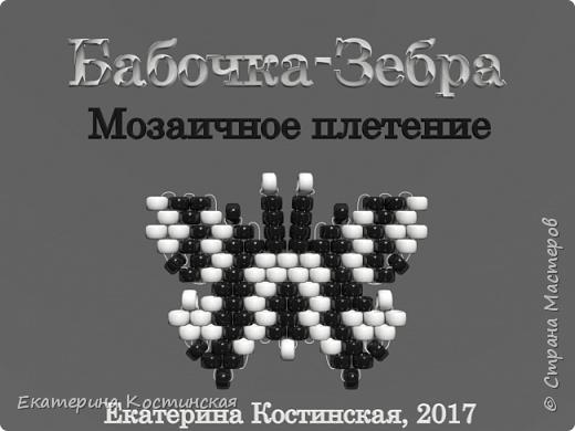 Марафон Плетения Бисерных Бабочек. Бабочка № 2 - Зебра.