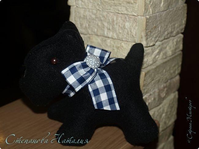 Добрый вечер, прошу прощения за фото, черная собака почти не получилась((( фото 7