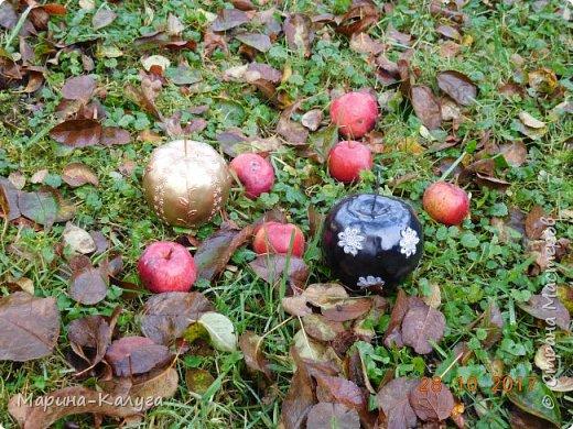 """Всем добрый день! Спасибо всем """"садоводам-яблоковедам"""" нашей страны за идеи, а особенно  Ольге Бэк за МК по чудесным яблочкам. фото 4"""