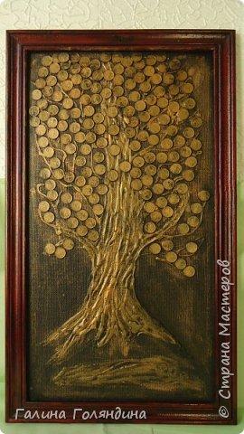 Денежное дерево . фото 1