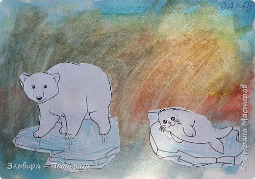 Животные Арктики фото 2