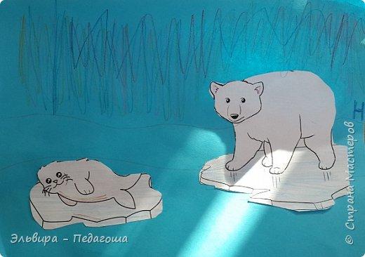 Животные Арктики фото 3