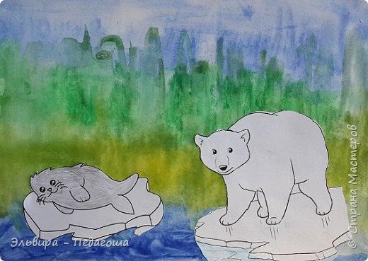 Животные Арктики фото 4
