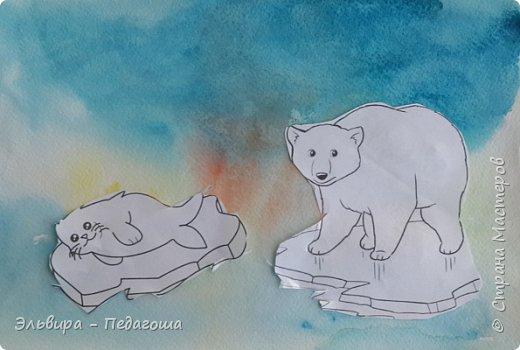 Животные Арктики фото 5