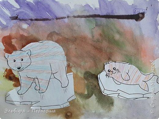 Животные Арктики фото 6