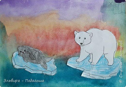 Животные Арктики фото 7