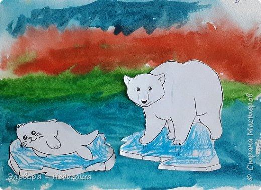 Животные Арктики фото 8