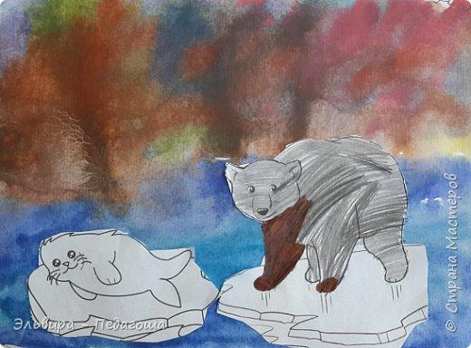 Животные Арктики фото 9