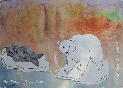 Животные Арктики фото 10