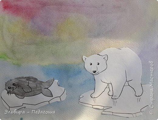 Животные Арктики фото 11