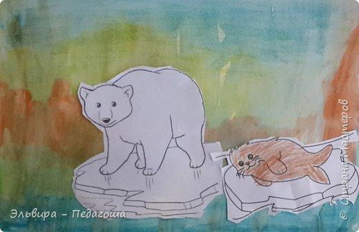 Животные Арктики фото 13